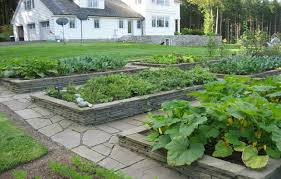 Small Picture Brick Edge Walls Raised Vegetable Garden Beds With Gravel Paths
