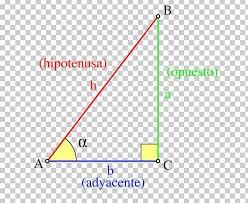 Trigonometric Functions Triangle Trigonometry Png Clipart