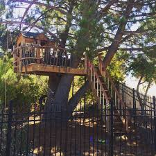 Treehouse, Tree House, Playhouse, Wood, tree branch hand rail, reclaimed  wood
