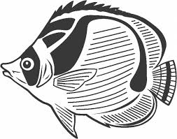 Small Picture tropical fish coloring pages