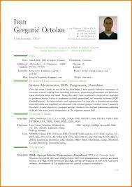 English Curriculum Vitae English Cv Template Download Canas Bergdorfbib Resume