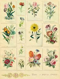 vintage flower sheets vintage flower illustrations bouquets digital collage sheet