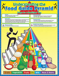The Food Pyramid Chart