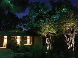 moonlighting treelighting installed by dallaslandscapelighting at 214 202 7474