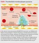 Brist på trombocyter