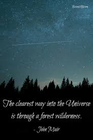 Universe Quotes Gorgeous Quotes About The Moon Sun Stars The Universe Boom48Bloom