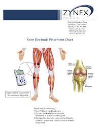 Zmpczm016000 12 12 Knee Electrode Placement Chart