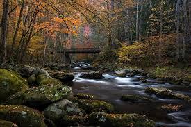 Great Smoky Mountains National Park Posts Facebook