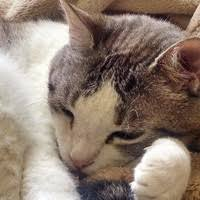 "7 ""Beth Parchman"" profiles | LinkedIn"