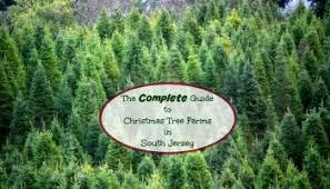 Wyckoffu0027s Christmas Tree Farm Hosts Grand Champion Tree Cutting Christmas Tree Cutting Nj