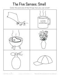 Five Senses Coloring Page Five Senses Coloring Page Pages 5 My 5