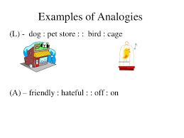 analogy essay sample san ramon descartes essay analogy examples