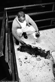 「1968 King assassination」の画像検索結果