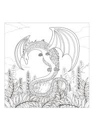 Coloring Pages Free Online For Adults Monster Dragon Dragons Adult