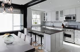 Small Kitchen Island Bar Kitchen Fantastic Minimalist Kitchen With Narrow Breakfast Bar