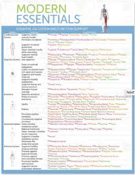 Modern Essentials Essential Oil System And Function Support Reference Chart Singular