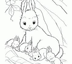 Small Picture Baby Animals Coloring Coloring Pages