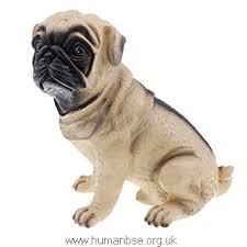 baosity lovely cartoon pug dog coin piggy bank money saving box decor birthday gift dkm5tuhfqiga11186