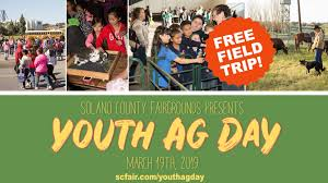 Lantern Light Festival Solano County Youth Ag Day Vallejo Arts Entertainment