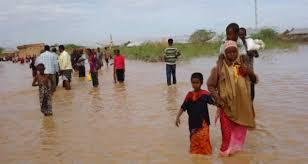 Wararkii ugu Dambeeyay Dad weli lagu la'ayahay Fatahaad Wabiga ee Magaalada B/weyne. | Somaliweyn