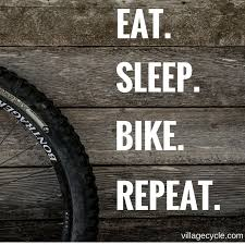 Cycling Quotes Mesmerizing Cycling Quotes Best Quotes Ever