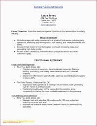 Resume Web Developer Examples Web Developer Summary Resume Lovely
