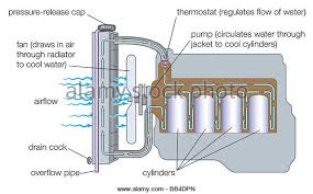 car engine diagram stock photos car engine diagram stock images typical gasoline engine cooling system stock image