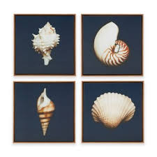 madison park ocean seashells 4 piece framed canvas wall art on plate wall art bed bath and beyond with buy madison park framed art wall decor from bed bath beyond