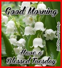 tuesday blessings good morning