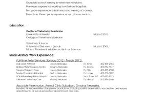 Medical Resume Format Resume Template