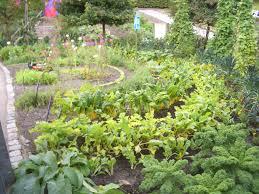 Small Picture Garden Design Courses Ireland izvipicom