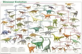 Laminated Dinosaur Species Evolution Poster 61x91cm Educational Wall Chart
