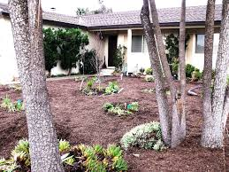Small Picture Front Yard Landscape Ideas Without Grass The Garden Inspirations