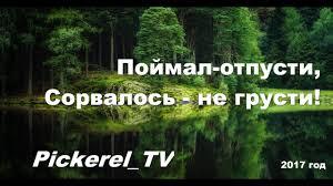 Нардепу Довгому вручено подозрение, - прокуратура - Цензор.НЕТ 2287
