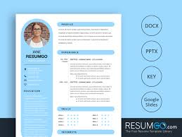 Rhea Round Resume Template Resumgocom