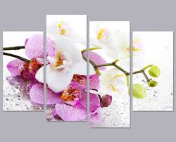 modern living room bedroom home decor pink phalaenopsis butterfly orchid flower canvas wall art picture print on orchid flower wall art with modern living room bedroom home decor pink phalaenopsis butterfly