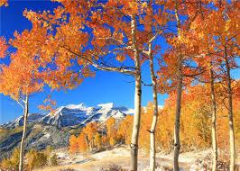 autumn mountains backgrounds. Amazon.com : 7x5ft-2.2x1.5m Autumn Photography Backgrounds Snow Mountain Backdrop Mountains T