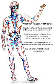 Lymph Flow Chart Pin By Marci Javril On For The Health Of It Lymphatic