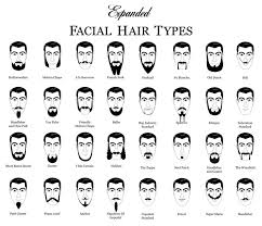 Mens Hair Types Chart Expanded Facial Hair Types Chart Heh Didnt Know Where To