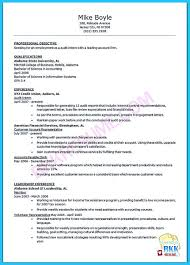 Understanding A Generally Accepted Auditor Resume Best Solutions Of