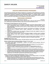 Self Storage Business Plan Template Self Storage Manager Resume New