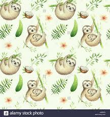 B B S Animaux Sloth Isol S P Pini Re Mod Le Homog Ne De La Peinture