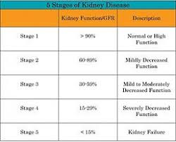 Kidney Disease Stages Chart Stages Chronic Kidney Disease Chart Kidney Disease Stages