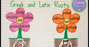 Latin Roots Chart Deckers 5th Grade Language Arts Social Studies Greek