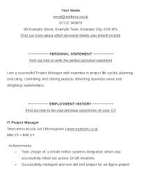 Resume Cv Title Examples Example Of Resume Title Sample Of Resume Beauteous What Is A Resume Title