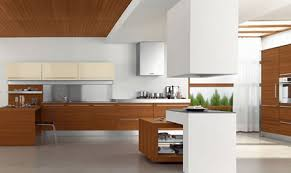 Small Picture Contemporary Kitchen Cabinet Doors Home Design Ideas