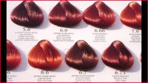 Shades Of Red Hair Color Chart Dark Red Hair Colour Chart Best Picture Of Chart Anyimage Org