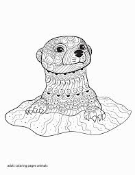 Forest Animals Coloring Pages Lovely 28 Collection Of Forest Animals