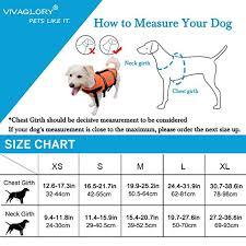 dog breed size chart amazon com vivaglory dog life jacket size adjustable dog lifesaver