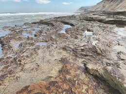 Rock Harbor Cape Cod Tide Chart An Ancient Cycle Of Erosion Carves The Beach The